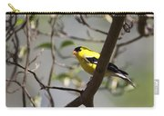 Golden Dogwood Carry-all Pouch