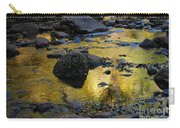Golden Fall Reflection Carry-all Pouch