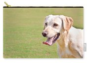 Golden Labrador Carry-all Pouch by Tom Gowanlock