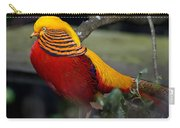 Golden Pheasant Posing Carry-all Pouch