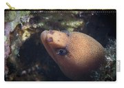 Golden Tail Eel Carry-all Pouch