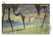 Good Catch Carry-all Pouch by Carol Groenen