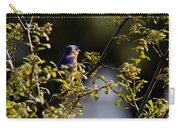 Good Morning Sunshine - Eastern Bluebird Carry-all Pouch