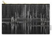 Goose Lake Dusk Carry-all Pouch