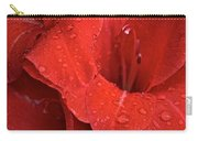 Gorgeous Glads Carry-all Pouch by Susan Herber