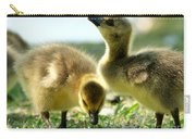 Goslings 6 Carry-all Pouch