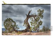 Grand Canyon Facing The Storm Carry-all Pouch