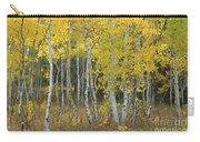 Grand Teton Aspens Carry-all Pouch