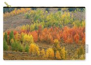Grand Teton Fall Color Carry-all Pouch