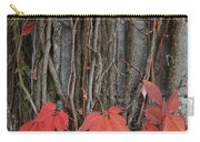 Grape Leaves On Column Carry-all Pouch
