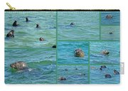 Gray Seals At Chatham - Cape Cod Carry-all Pouch