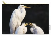 Great Egret In Nest With Young Carry-all Pouch