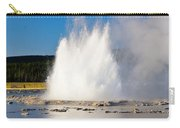 Great Fountain Geyser Carry-all Pouch
