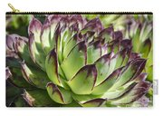 Green And Red Succulent Carry-all Pouch