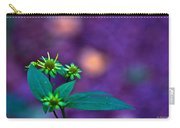 Green And Turquoise Carry-all Pouch