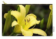 Green And Yellow - Lily Carry-all Pouch