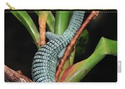 Green Arboreal Alligator Lizard Abronia Carry-all Pouch