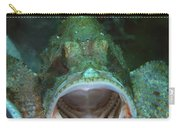 Green Grouper With Open Mouth, North Carry-all Pouch by Mathieu Meur