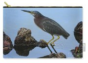 Green Heron Visiting The Pond Carry-all Pouch