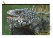 Green Iguana Barro Colorado Island Carry-all Pouch