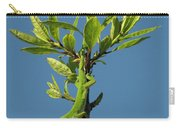Green Lizard In Love Carry-all Pouch