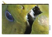 Green Moray Eel Close-up On Caribbean Carry-all Pouch