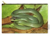 Green Racer Drymobius Melanotropis Amid Carry-all Pouch