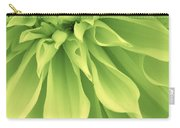 Green Sherbet Carry-all Pouch