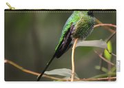 Green Tailed Trainbearer Hummingbird Stylized Carry-all Pouch