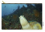 Green Turtle On Reef, Manado, North Carry-all Pouch