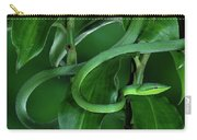 Green Vine Snake Oxybelis Fulgidus Carry-all Pouch