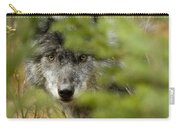 Grey Wolf, Outside Golden, British Carry-all Pouch