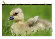 Greylag Goose Gosling Carry-all Pouch