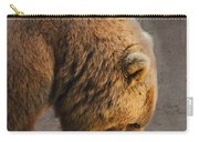 Grizzly Hanging Head Carry-all Pouch