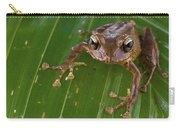 Ground Frog Nakanai Mts Papua New Guinea Carry-all Pouch