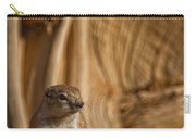 Ground Squirrel At Monument Valley Carry-all Pouch
