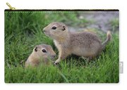 Ground Squirrels, Oak Hammock Marsh Carry-all Pouch
