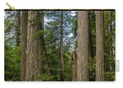 Group Of Redwoods Carry-all Pouch