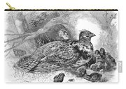 Grouse And Young Carry-all Pouch
