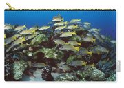 Grunt School Along Coral Reef Cocos Carry-all Pouch by Flip Nicklin
