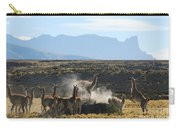 Guanacos In Action Carry-all Pouch