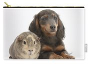 Guinea Pig And Blue-and-tan Dachshund Carry-all Pouch