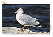 Gull 2 Carry-all Pouch