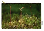 Haircap Moss Carry-all Pouch