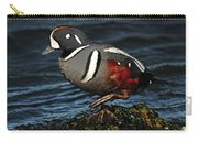 Harlequin Duck Carry-all Pouch