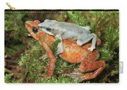 Harlequin Frog Atelopus Varius Pair Carry-all Pouch