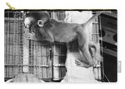 Harlows Monkey Experiment Carry-all Pouch