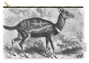 Harnessed Antelope Carry-all Pouch