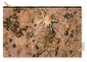 Harvestman Crosbyella Sp. In Cave Carry-all Pouch