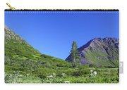Hatcher Pass Alaska Carry-all Pouch